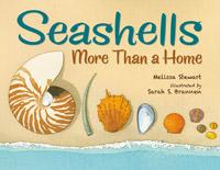 seashells-more-than-a-home-cvr_large